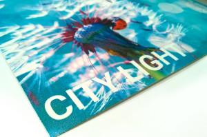 Citylight Paper