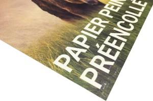 Papier Peint Préencollé